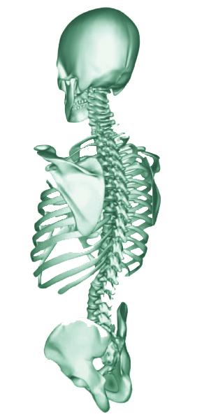 Hochwimmer Klinikprodukte - Medizinische und chirurgische Instrumente | Unsere Schwerpunkte liegt in den Bereichen Schädel- und Wirbelsäulenchirurgie. Wir sind Ihr Partner für Klinikprodukte aus dem Bezirk Rohrbach in Österreich.